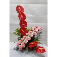 6 Anthurium 20 Pink carnation In one sided Arrangement