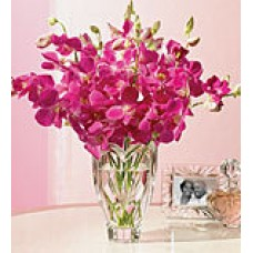 Carnation With Orchids bunch
