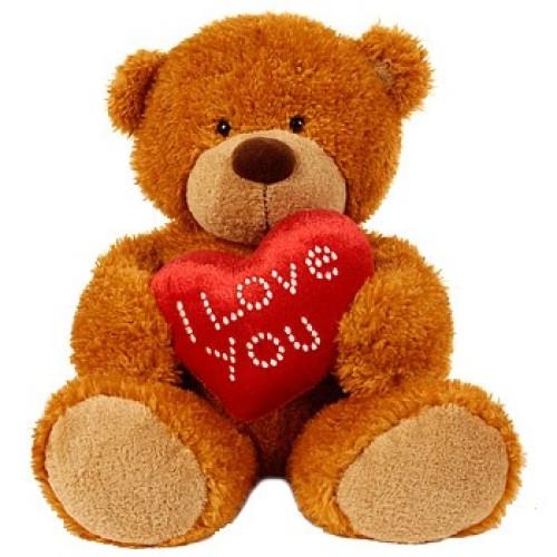 Teddy 6inch