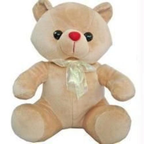 Teddy 12inch