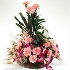 Carnation With Orchids