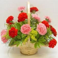 Carnations Arrangement