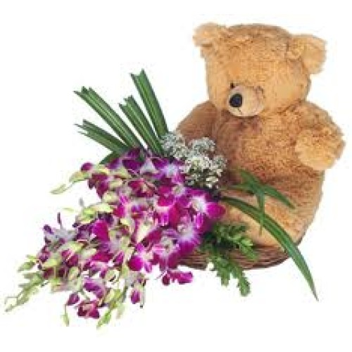 Orchids + Soft Toy