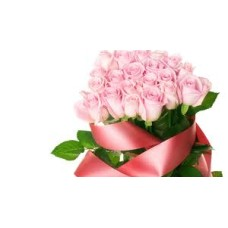 Pink Roses bunch